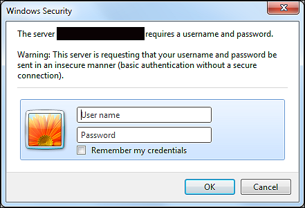 website login dialog with basic realm authentication